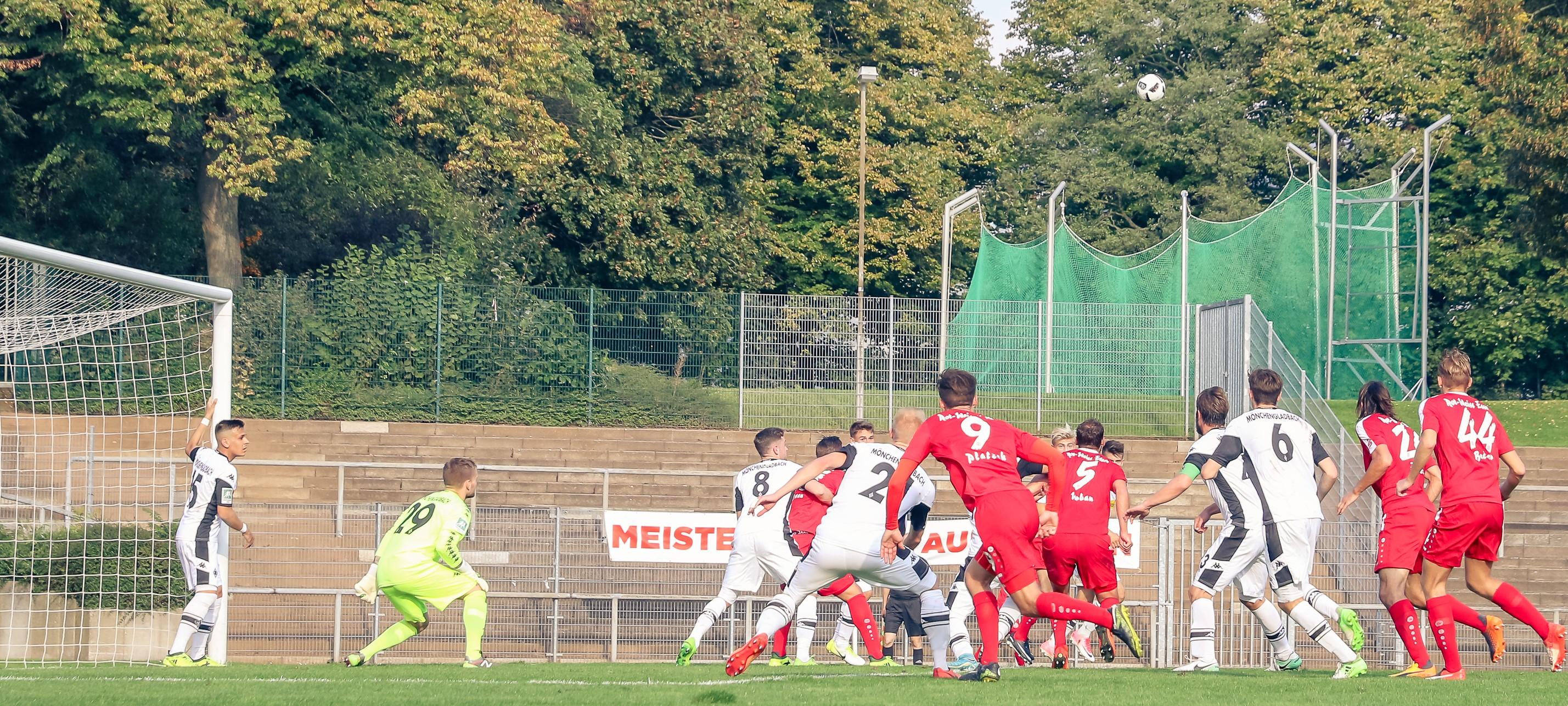 Die Fohlen zählen zu den spielstärksten Teams der Liga. (Foto: Endberg)